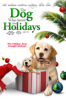 The Dog Who Saved the Holidays - Michael Feifer
