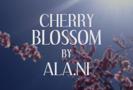 Cherry Blossom - ALA.NI