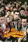 The Wanderers wiki, synopsis