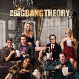 Big Bang Theory Staffel 8