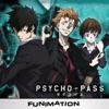 Psycho-Pass, Season 1 wiki, synopsis