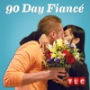 90 Day Fiancé, Season 1 - Synopsis and Reviews