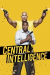 Central Intelligence wiki, synopsis