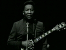 Got My Mojo Working - Muddy Waters