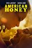 Andrea Arnold - American Honey  artwork