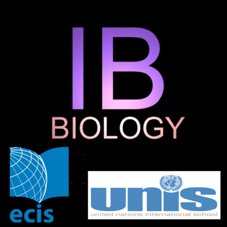 ib biology The ib biology syllabus is a list of all the content understandings (u) , applications (a) and skills (s) that the ib organization mandates are taught throughout the two years of the ib biology higher level course.